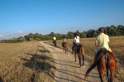 Tour a cavallo sul Parco della Murgia